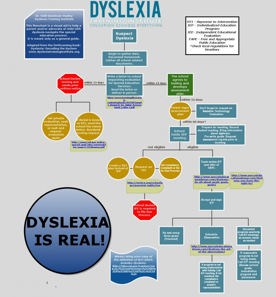 Navigating the Special Education Process Infographic by The Dyslexia Training Institute